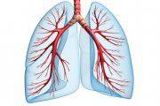 بیماری های عفونی دستگاه تنفس