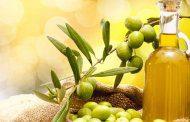 روغن زیتون و درمان موخوره