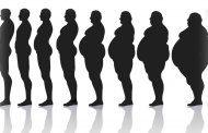 مدلهای چاقی