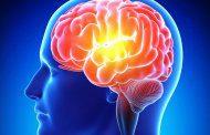 کاهش حافظه با التهاب و عفونت