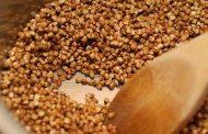 کودکان خود را با گندم سیاه تغذیه کنید