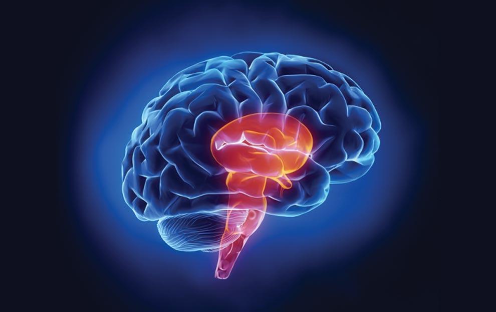 این روغن از سکته مغزی جلوگیری میکند