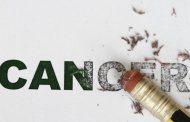 بهترین غذاها برای مبارزه با سرطان در دارندگان گروه خون B