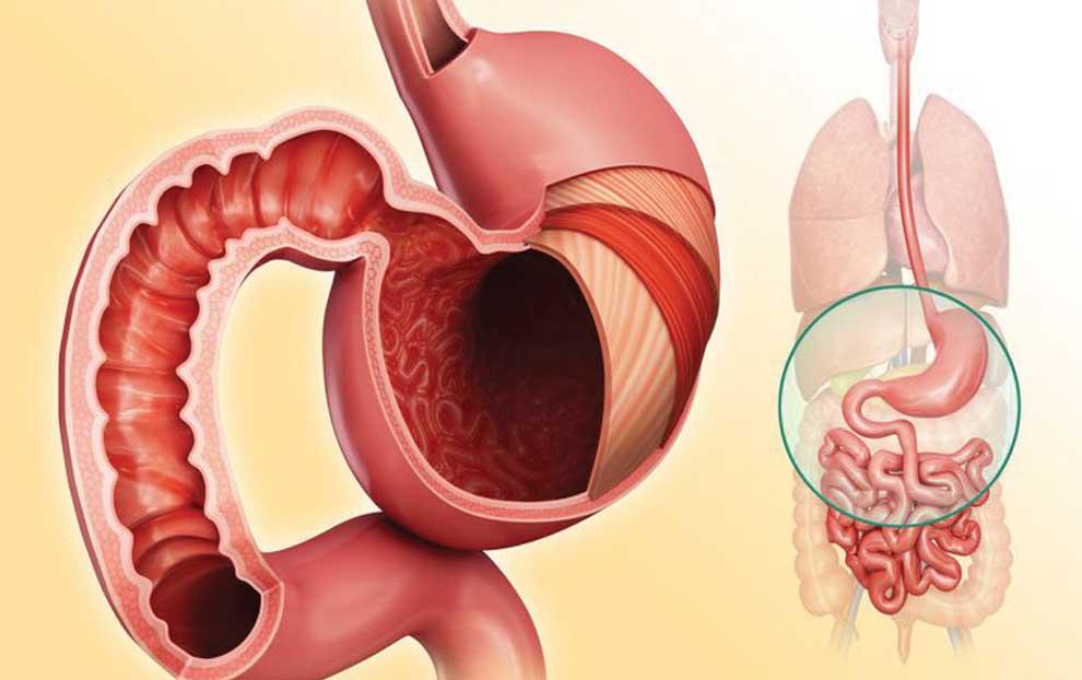 نظر دکتر محمد دریایی در رابطه گروه خونی A با یبوست و بیماری های گوارشی