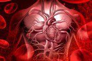رابطه بیماری های قلبی با علم گروه خون