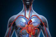 10 علامت هشدار دهنده گردش خون ضعیف در بدن