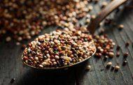 آیا کینوا یک غذای کامل و سرشار از پروتئین است؟