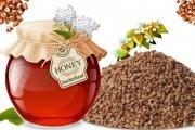 خواص عسل به دست آمده از گل گندم سیاه