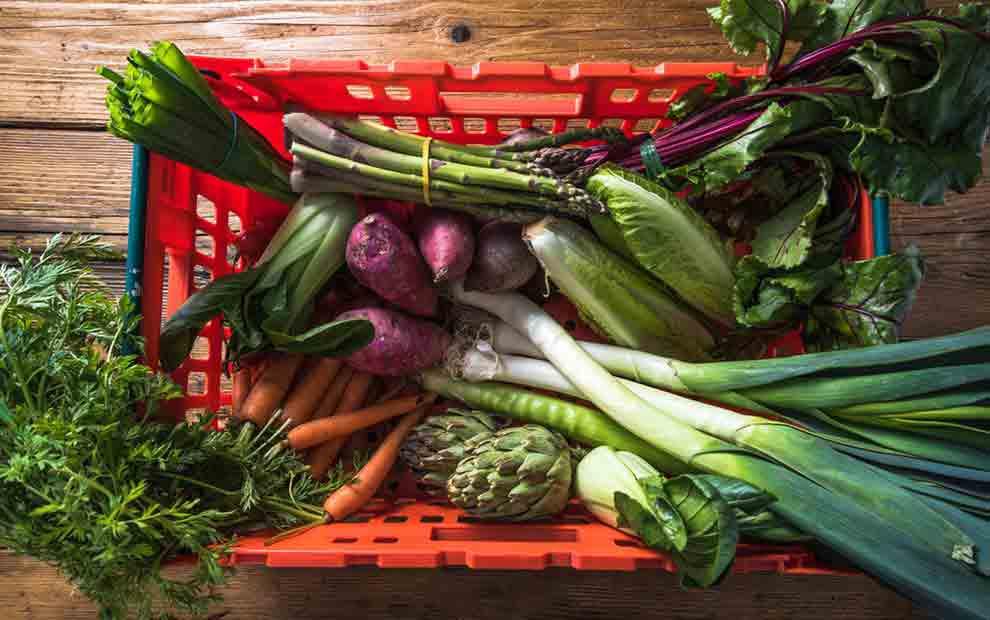 5 سبزی غنی از پروتئین