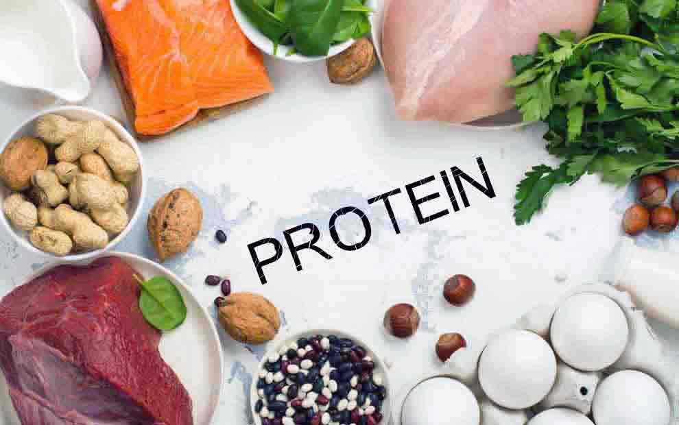 بدن به چه مقدار پروتئین نیاز دارد؟