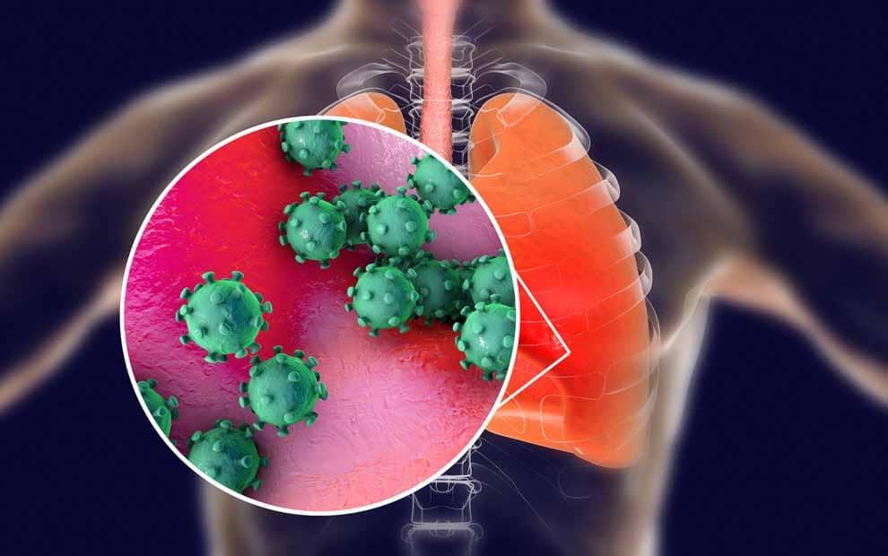 ویروس کرونا و سیستم ایمنی بدن